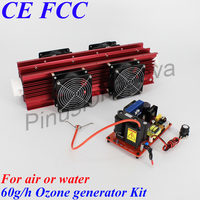 Pinuslongaeva 60G/H 60grams adjustable Quartz tube type ozone generator Kit ozone air cleaner water purifier electronic ozonator