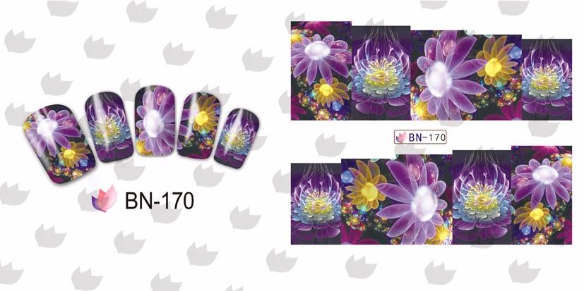BN170