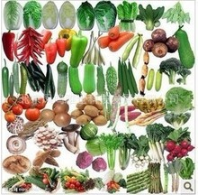 Balcony Vegetables Package bonsai  Mix Hot Organic Vegetable 100pcs/lot