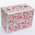 New 2016Hot Hello Kitty High Quality Professional Makeup Organizer Bolso Mujer Cosmetic Case Large Capacity Storage Bag Suitcase