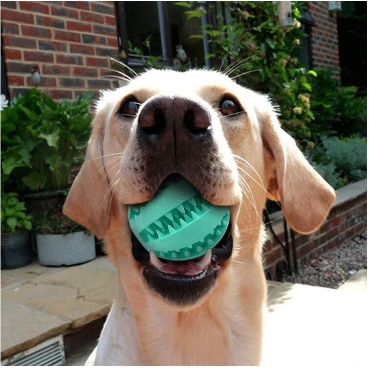 Pet Dog Toy Interactive Rubber Balls Pet Dog Cat Puppy Chew Toys Ball Teeth Chew Toys Tooth Cleaning Balls Food AA 1