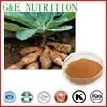 100% Natural Rehmannia Glutinosa Extraction 10:1 500g
