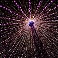 2016 CALIENTE LLEVÓ la lámpara de Interior festa de casamento 400LED 50 M 220 V Decoración Multicolor Cuerdas de colores Luz de la boda Nueva Partido Del año