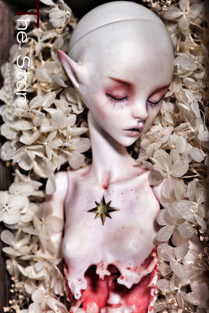 HeHeBJD 1 6 the MOON and STAR toy dolls resin bjd free eyes free shipping
