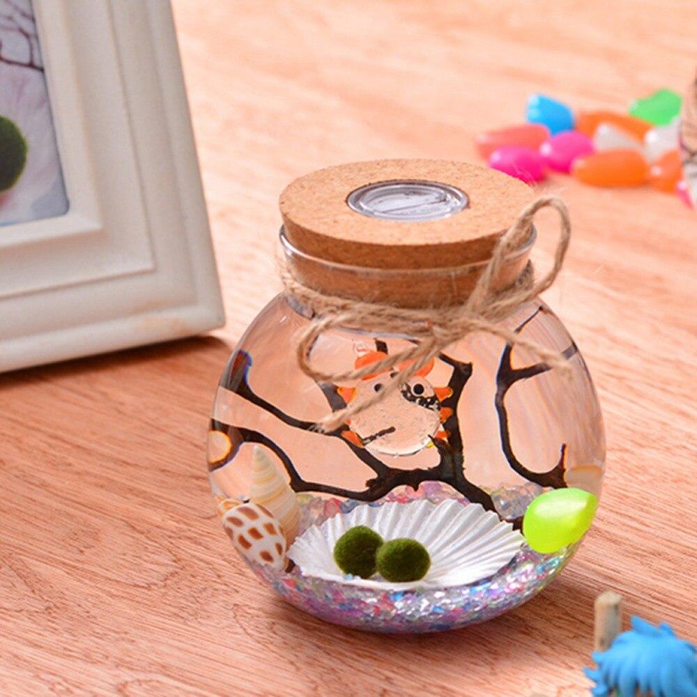 Ronde Glazen Pot.Us 4 99 20 Off 11 Cm Ronde Glazen Pot Terrarium Met Kleurrijke Led Licht Kurk Micro Landschap Ecologische Fles Night Lights 264310 In 11 Cm Ronde