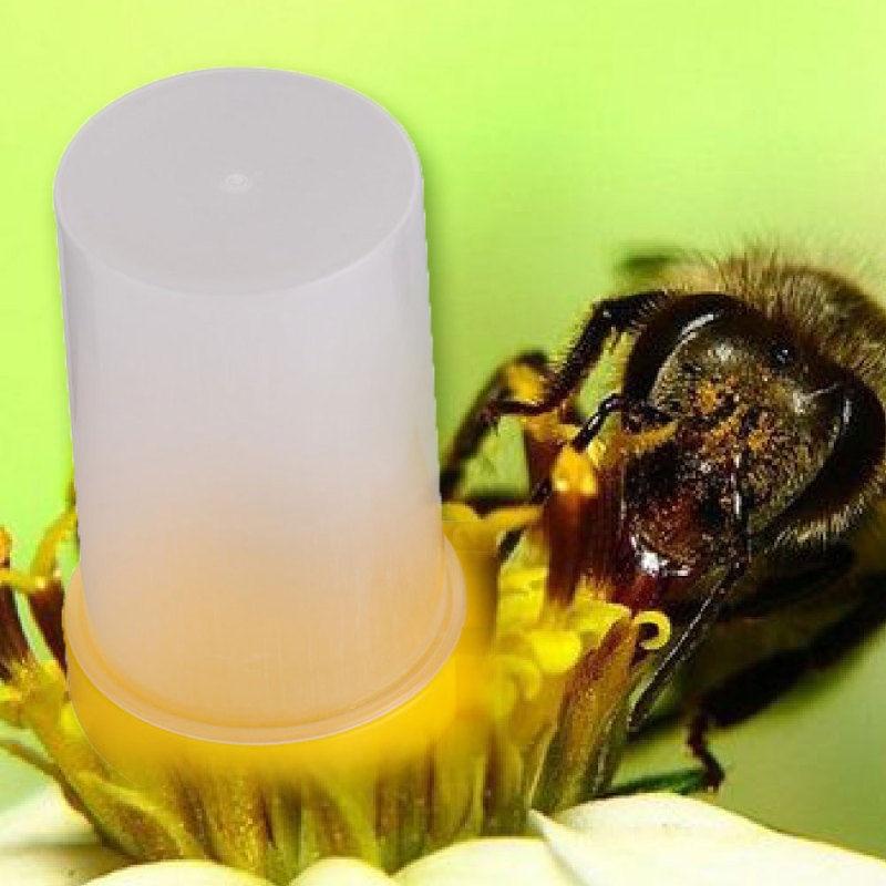 Portable Bee Beehive Water Feeder Bee Drinking Entrance DIY Beekeeper Nest Cup