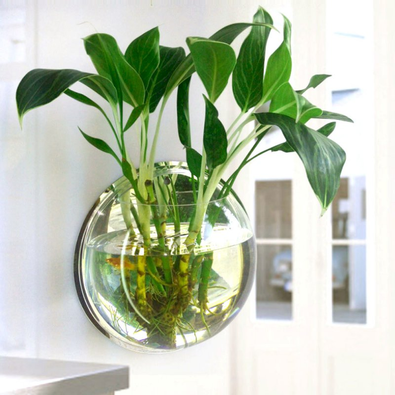 Popular bowl fish tanks buy cheap bowl fish tanks lots for Plant with fish in vase