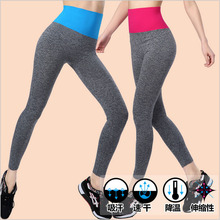 female elastic skinny pants for excise legging Workout clothes aerobics  pantyhose Slim thin  WA03