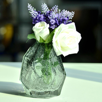 Clear fashion glass vase mini Handmade colored for decoration home decor Tabletop vases for flowers for centerpieces terrarium