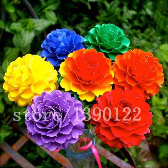 100 pcs rare real Rainbow Chrysanthemum Flower Seeds, rare color ,new arrival DIY Home Garden