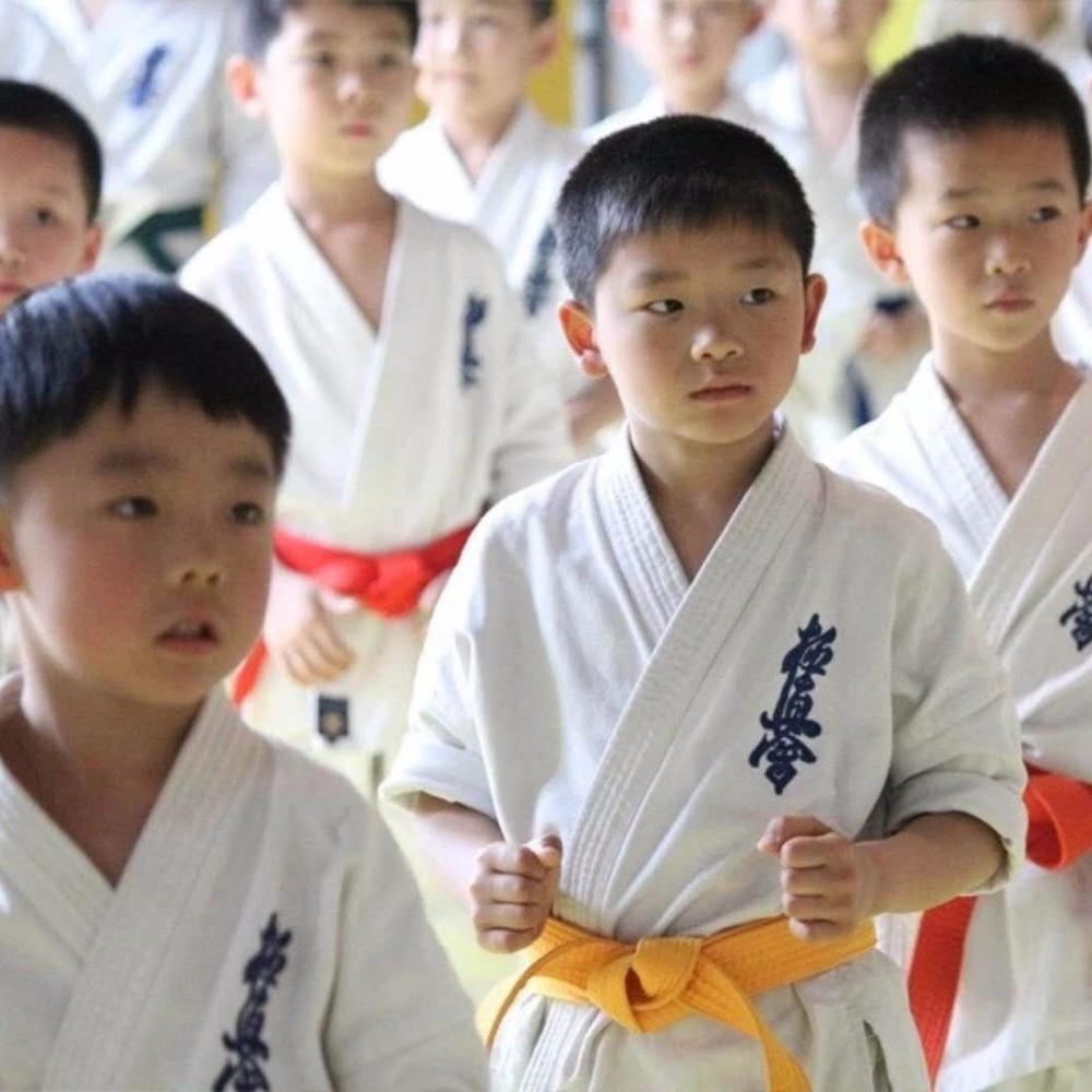 Details about Kyokushinkai dogi Gi kimono 100% Cotton Canvas Karate gi  Kyokushin Uniform