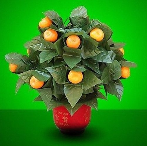 Blooming Oranges - Remote Control (20 Oranges,Battery Version) Magic Tricks Stage Party Wedding Prop Comedy Appear Vanish Magia