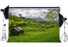 Primavera Cenário Vila Rústica Selva Floresta Backdrops Fundo Prado Flores Frescas da Grama Verde