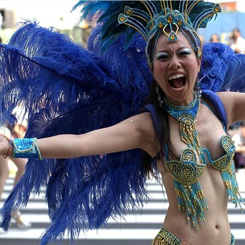 Samba 100 teile / los Verkauf Farbige Straußenfeder 65 cm-70 cm, - Kunst, Handwerk und Nähen - Foto 1