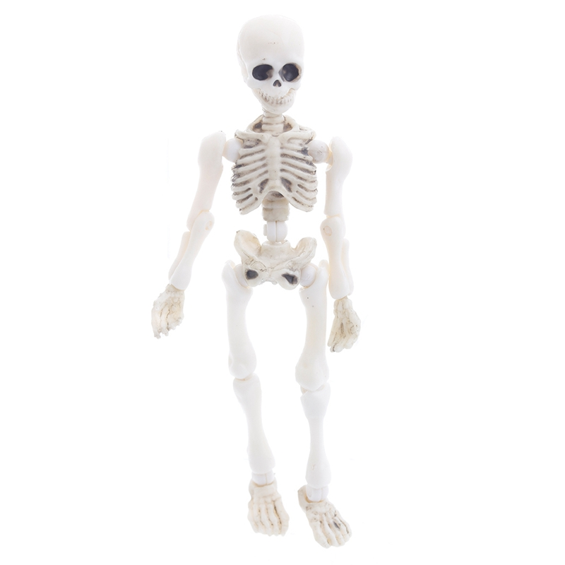 Movable Mr. Bones Skeleton Human Model Skull Full Body Mini Figure Toy Halloween-m15