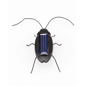 Black Children Insect Bug Teac