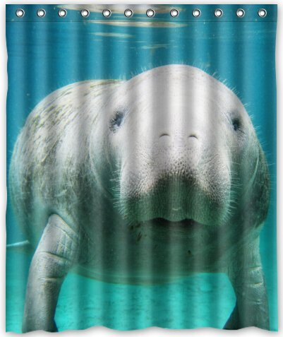 Cool design Manatee Shower Curtain 60(w) x 72(h) Generic Shower Curtain Liners ...