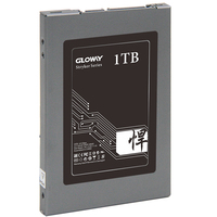 Cheap Price Solid State Disk SATA3 240GB With Factory Price