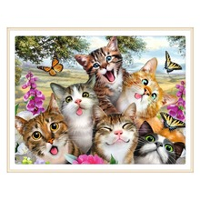 5D DIY diamond painting painted cartoon animal cat mosaic embroidery cross crafts