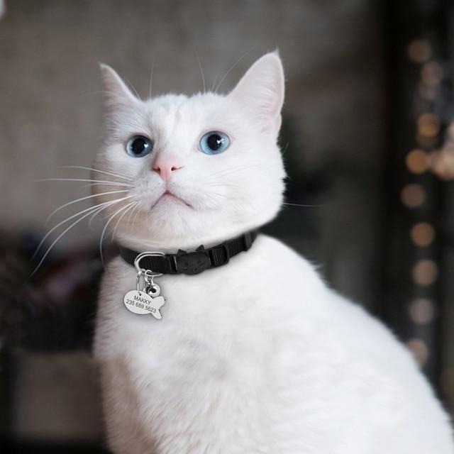 Quick Release Cat Collar 4