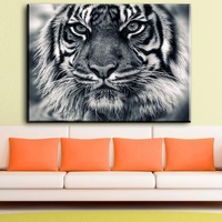 ZZ1811 black and white tiger canvas prints art decorative animal canvas pictures oil art painting for livingroom bedroom decor