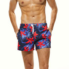 Mens Board Shorts Su...