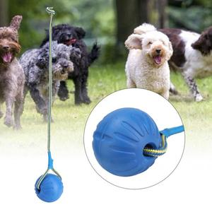 9cm Portable EVA Pet Dog Training Bite Resistant Interactive Chew Toys Ball with Carrier Rope Dog Ball Toy Pet Puppy Supplies(China)