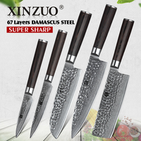 XINZUO 5 PCS Kitchen Knife Sets 67 layers High Carbon Damascus Stainless Steel Knife Cleaver Chef Utility with Pakka Wood Handle