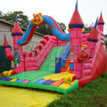 2014 Summer Product Giant Inflatable Water Slide Commercial Inflatable Slide For Sale