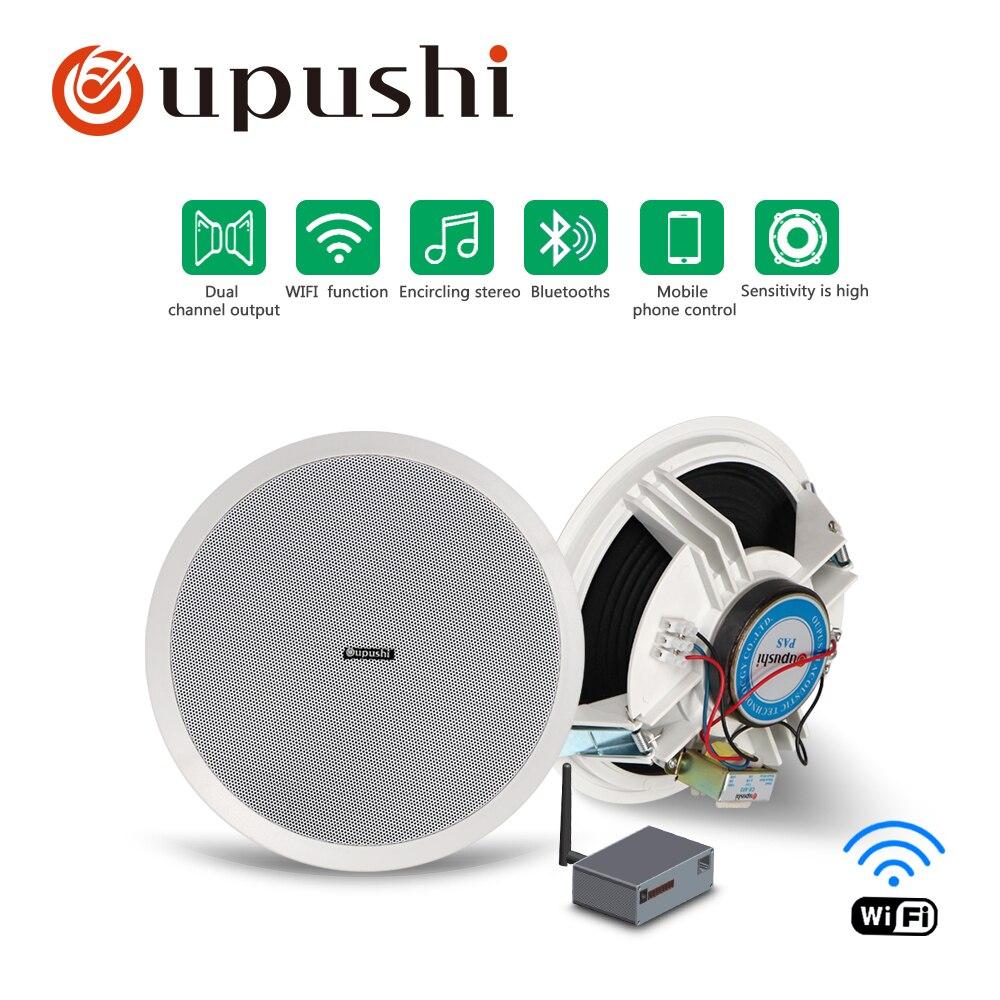 100% QualitäT Oupushi Ce 802 In-decke Speakre Mit Wifi Verwenden Hintergrund Musik System Pa System Fortgeschrittene Technologie üBernehmen