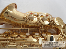 Boutique E-flat alto saxophone / wind TOP music double rib quality guarantee free shipping