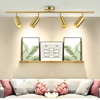 Nordic Gold Wall Mounted led Ceiling Light Living Room Dining Room Home Spot Light Cloakroom Clothing Store Cafe led Lighting