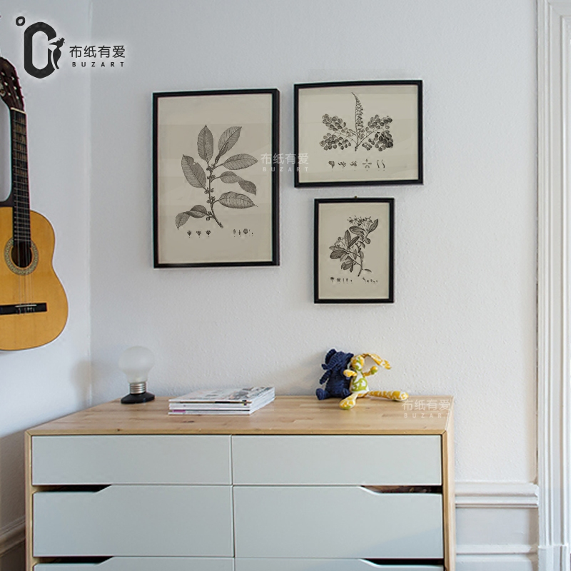 Botanická bylina retro vintage plakát rostlin a květin Umělecké reprodukce Plátno Malování pro ložnici Nástěnná malba Home Decor No Frame