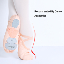 Dance Academy Three Soft Split Sole Ballet Shoes Adult Professional Girls Women Stretch Fabric Mesh Splice Dance Slippers