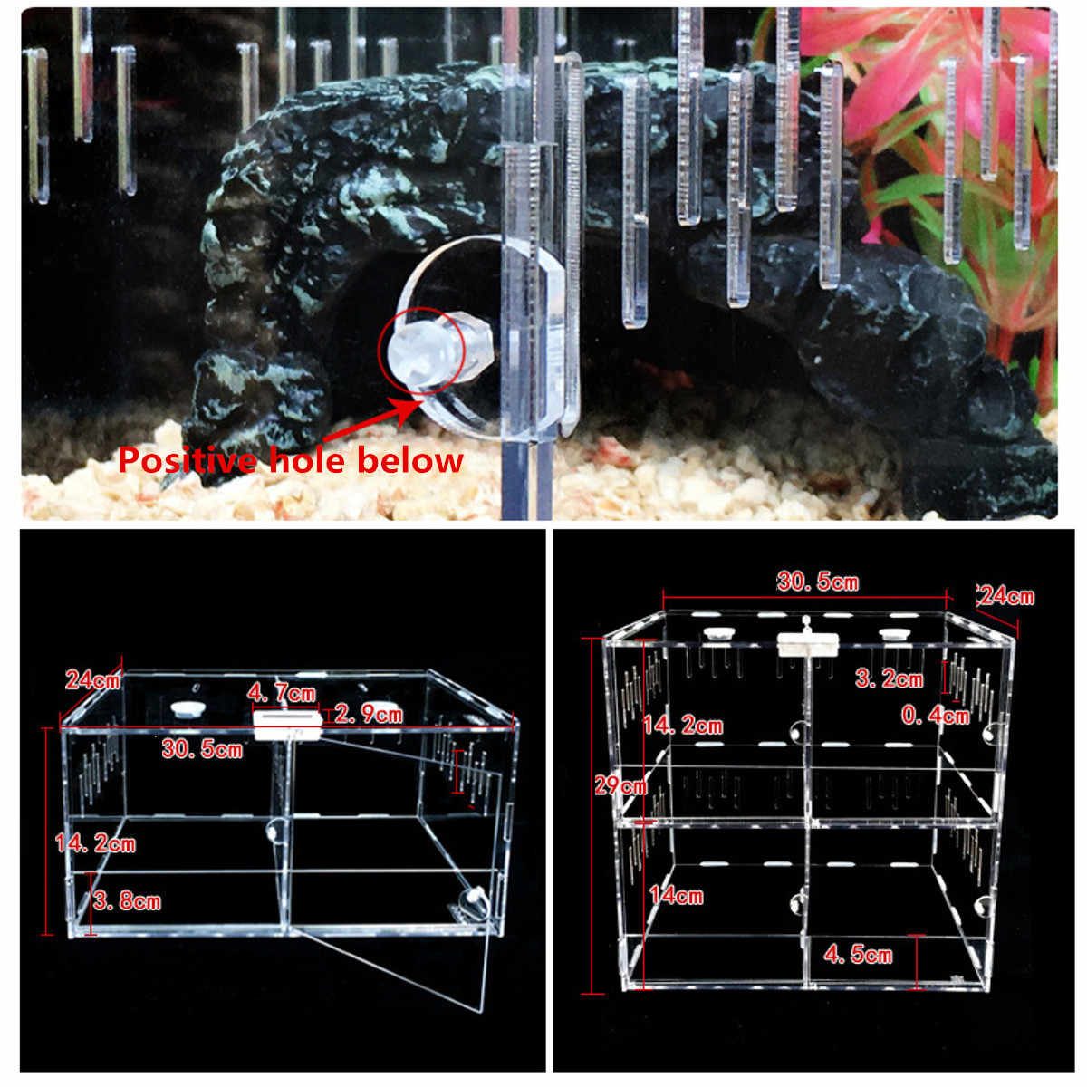 Pet Reptile Tank Acrylic Terrarium 4 Grids Insect Spiders Lizard Breeding Box Tortoise Snakes House Cage Reptiles Accessories