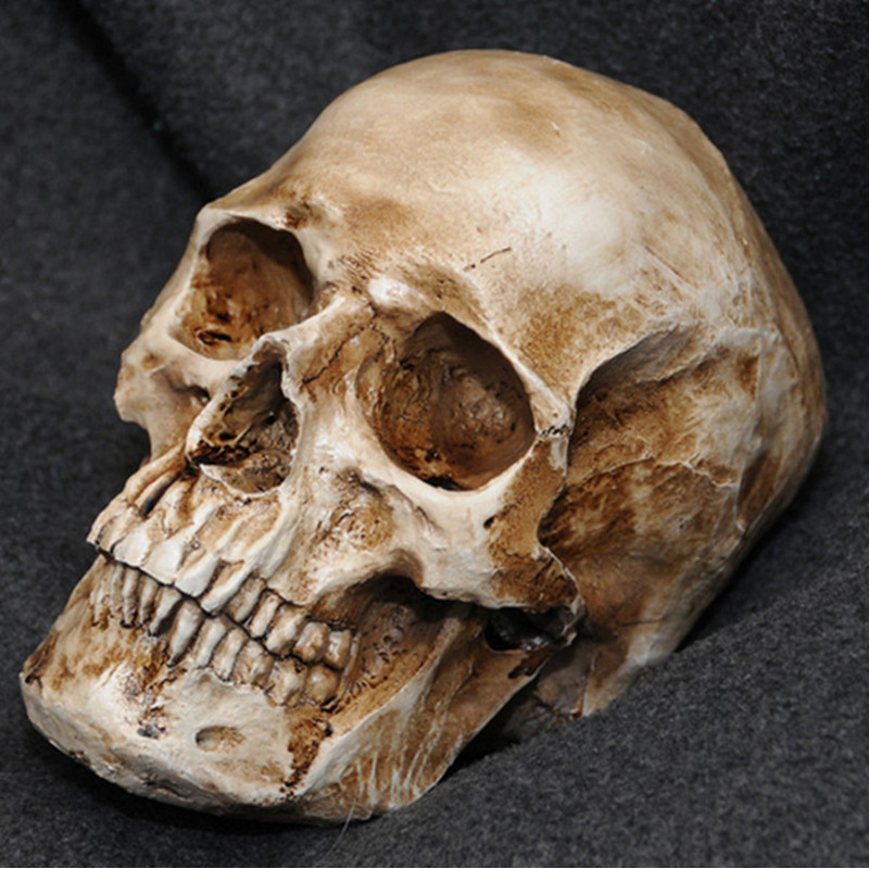 P-Flame חיקוי עתיק אדם גולגולת שרף רפליקה דגם רפואי מציאותי lifesize 1: 1 שרף יד שרף בית קישוט