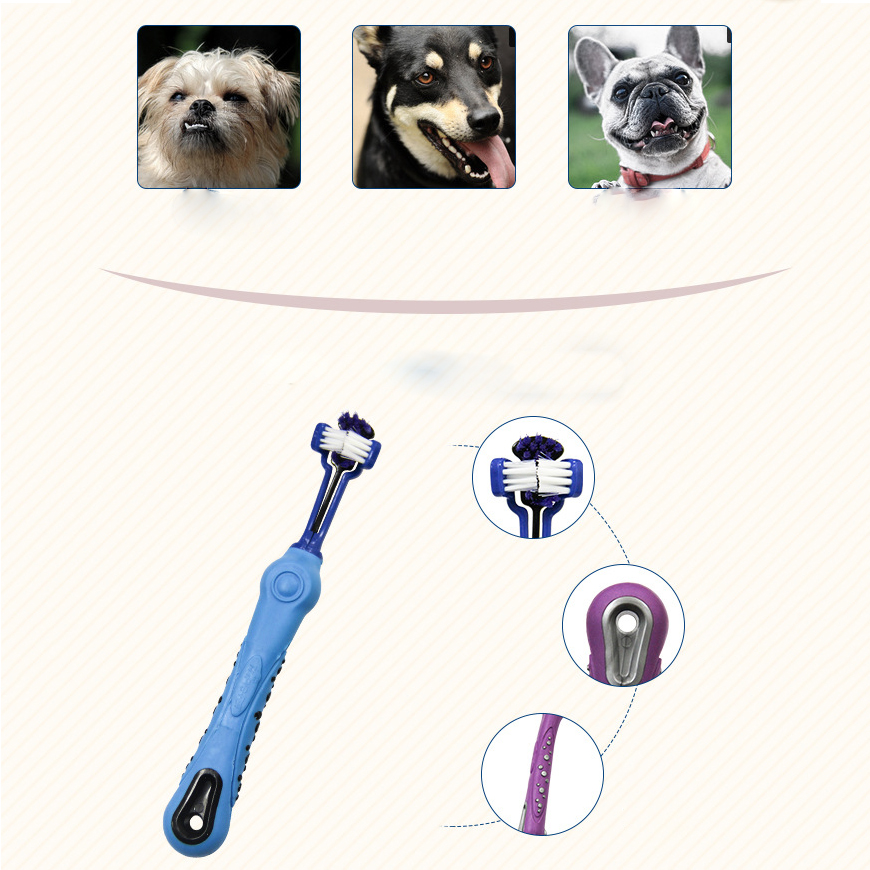 Three-sided Pet Toothbrush 10