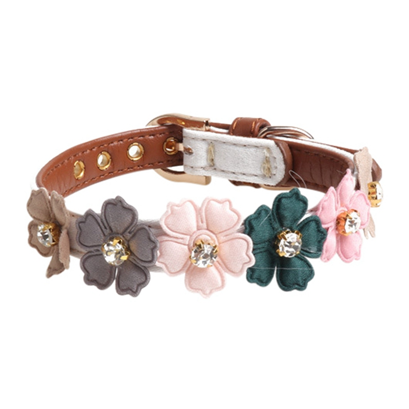cute dog collars for males