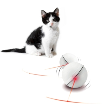 Cat LED Light Magic Ball