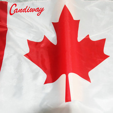 candiway Dominion of Canada banner Canadian flag Ottawa Canada Day flag red maple leaf CA 90 x 150 cm(China)