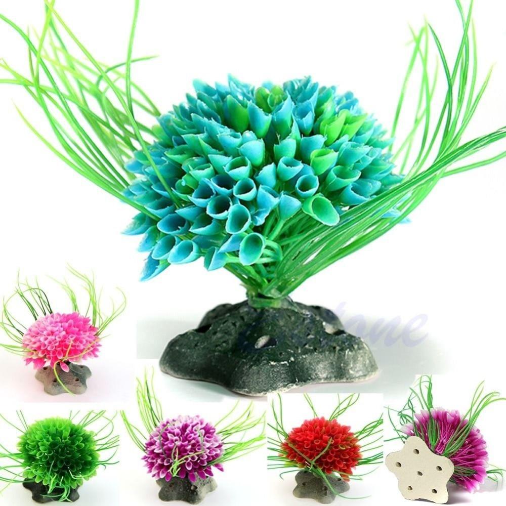 ხელოვნური წყლის მწვანე - შინაური ცხოველების საქონელი