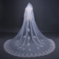 Bride Wedding Luxury Long Veil Beige Cathedral Veils Lace Edge Bridal Veil with Comb Accessories TS17109