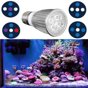 top 10 most popular a small aquarium with lighting