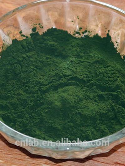 algae chlorella  powder supplement
