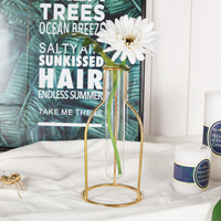 Małe świeże pulpit dekoracji hydroponicznych wazon kwiat kwiat kwiat pokoju szklana rurka