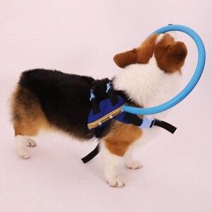 Image 5 - Tyteps слепое животное Анти столкновение кольцо Скорпион катаракта защита животных круг поводок для собак для маленьких щенков Йоркширские