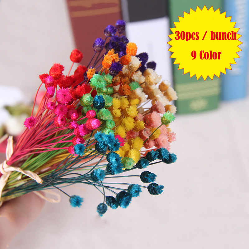 10bunch(300pcs) Artifitial Flower Dried Flower Gypsophila Paniculata Used for Aroma Diffuser Accessaries Home Decoration
