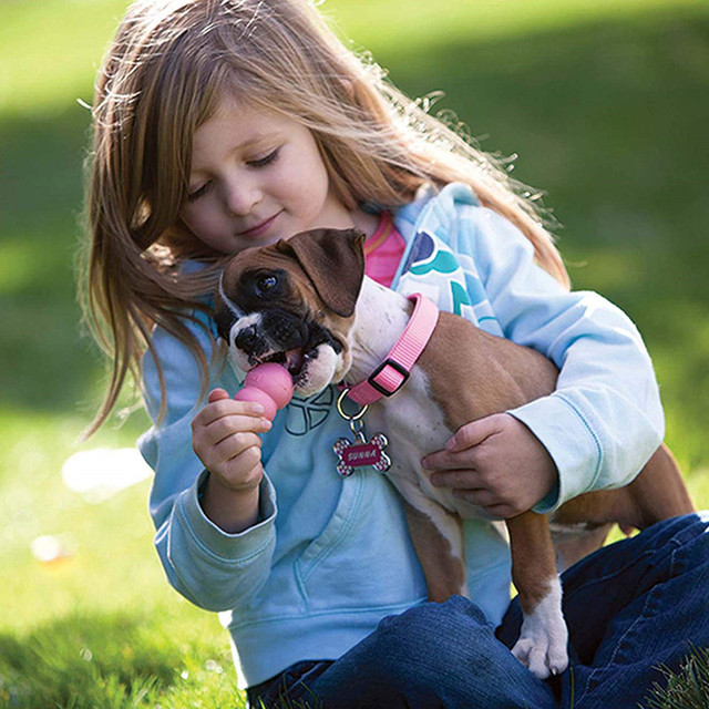 How Petting Dogs Lowers Blood Pressure