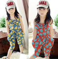 Girl Baby Heart Pattern One Piece Jumpsuit Cropped Trousers Harem Pants 2-7 Year