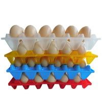 1 PCS Recipiente De Armazenamento De Bandeja de Ovos de Plástico Ovos de Galinha frango Pato Ganso Engrossar E Grande Capaz de Conter 30 Ovos oferta de gado|Suprimentos de alimentação e rega| |  -